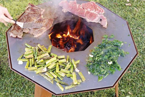 Nove portable plate grill - cooking meat and vegetables